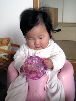 自宅のバンボに座って、オーボールを見つめる ポニョ
