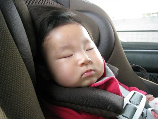 チャイルドシートに熟睡する ポニョ