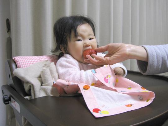 イチゴを食べる ポニョ