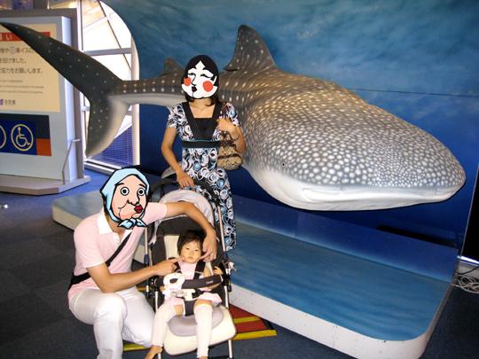 初めての海遊館