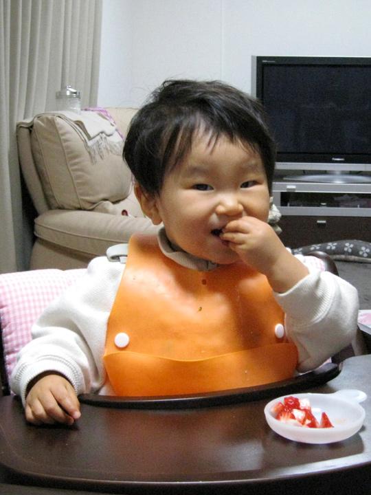 食後のデザートのイチゴを食べる ポニョ